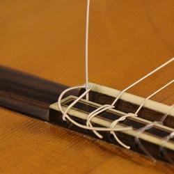 loop guitar string