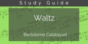 waltz calatayud guitar study guide