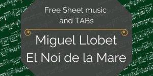 Llobet Free Guitar Noi
