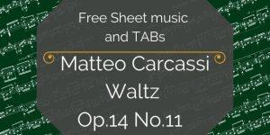 carcassi guitar notation pdf
