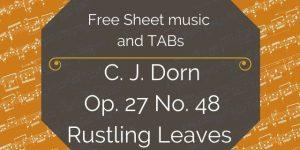 Dorn free tremolo etude